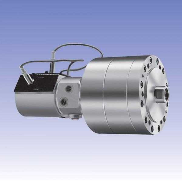 RCSV | 중실 회전 유압 실린더(스위치 부착 및 체크 밸스 내장형)